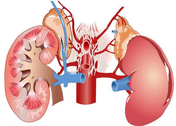 Комбинации препаратов для лечения гипертонии