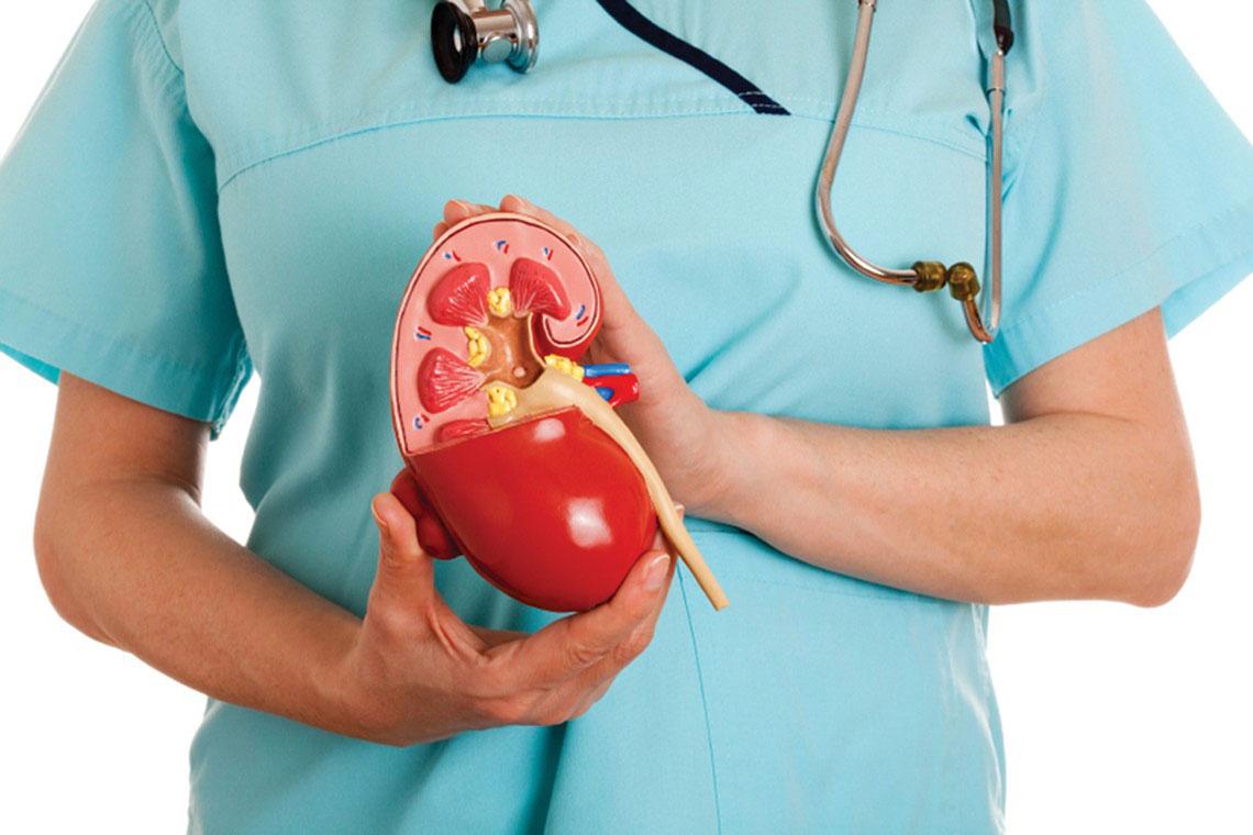 Беременность при мочекаменной болезни