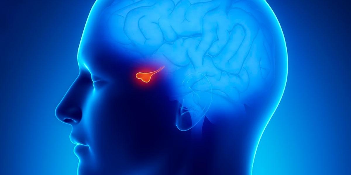 боль в носу головная боль