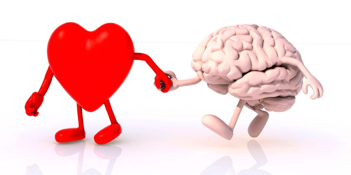 Гипертензия головного мозга – в чем причины ВЧГ, её лечение и последствия