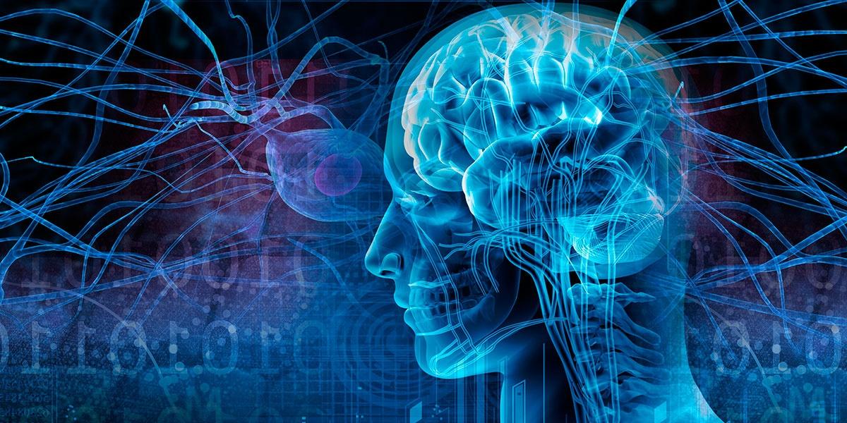 Очаги демиелинизации головного мозга что это такое