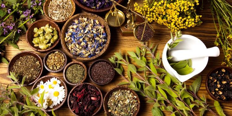 фитотерапия и народные методы лечения