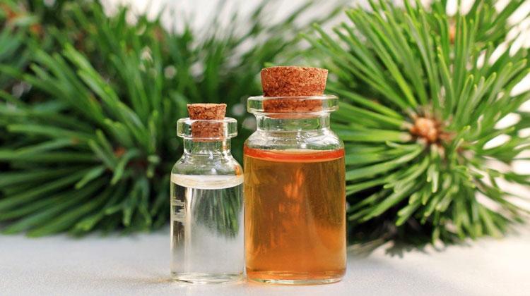 Пихтовое масло как лечение при простатите