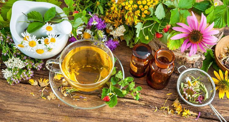 травяной чай простатита