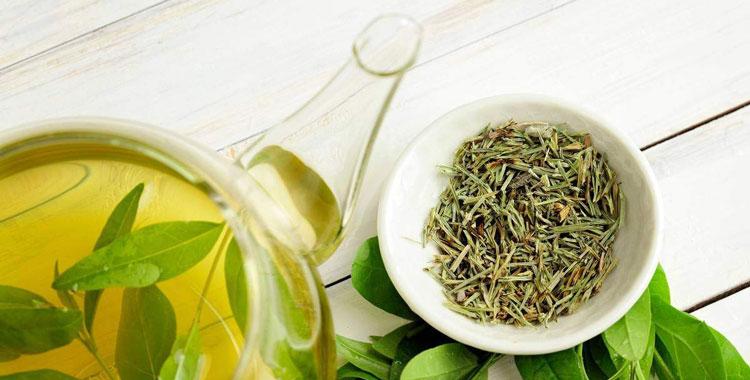 зеленый чай для лечения простатита