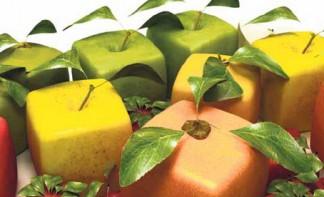 раздельное питание при диете